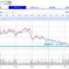米国株のポートフォリオ(22銘柄)|過去5年の最安値圏に近い銘柄を買い集め中